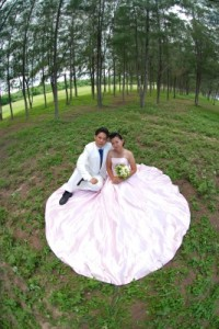 wedding greetings, wedding messages, wedding sms